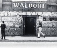 faculdade-waldorf